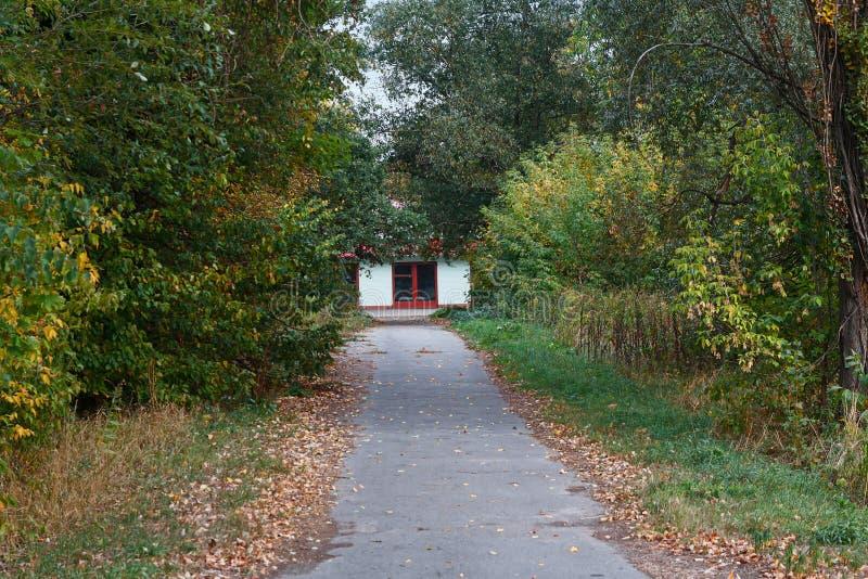 Vicolo nel parco di autunno e nella caserma dei pompieri immagini stock libere da diritti
