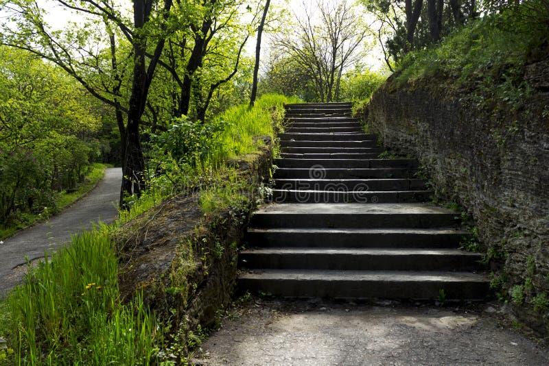 Vicolo pedonale del giardino floreale famoso del parco di Pjatigorsk immagine stock