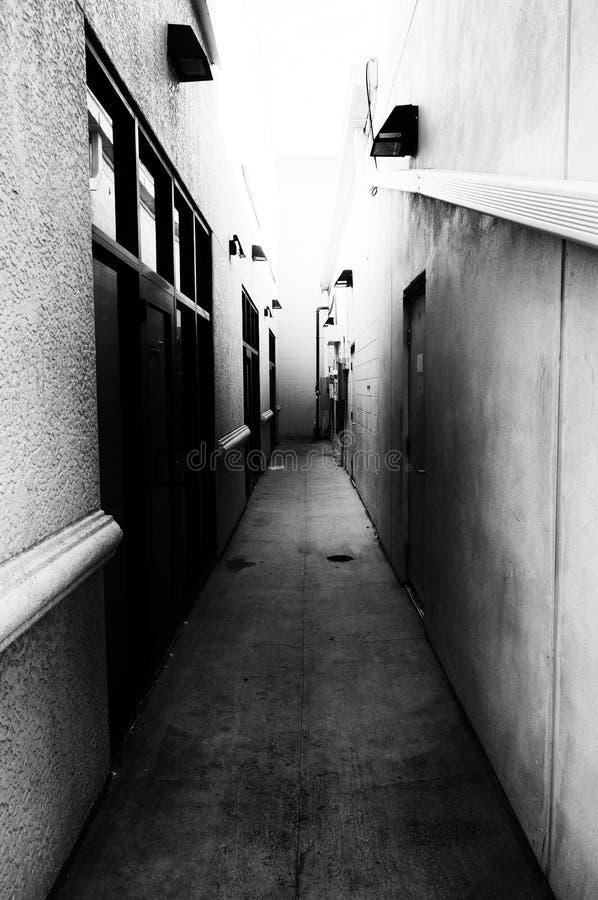 Vicolo terrificante scuro in bianco e nero immagini stock