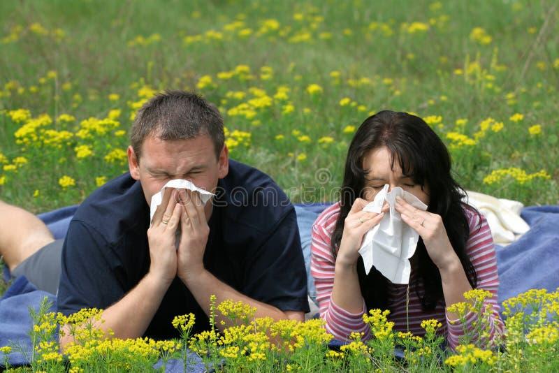 Victimes d'allergie images libres de droits