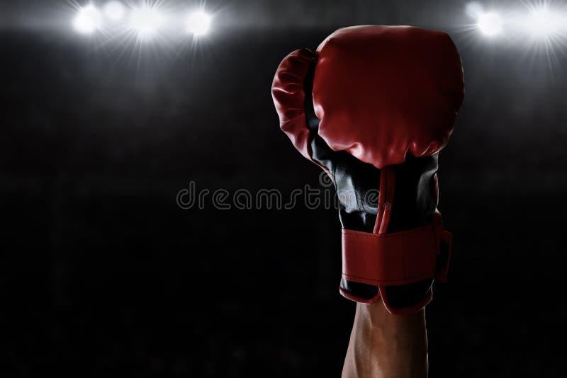 Victoire de boxeur le match de championnat photo libre de droits