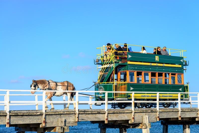 Victor Harbor Horse Drawn Tram royaltyfria bilder