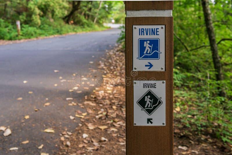 VICTORIA, CANADÁ - 13 DE JULIO DE 2019: Rastro de Irvine en el más forrest en la isla de Douglas Park Vancouver del soporte foto de archivo libre de regalías