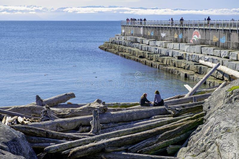 VICTORIA, CANADÁ - 9 DE MARZO DE 2018: Opinión Ogden Point Breakwater, un paseo popular cerca de la instalación de puerto más ocu fotografía de archivo libre de regalías