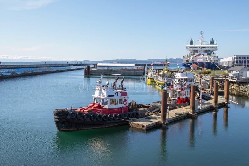 VICTORIA, CANADÁ - 9 DE MARZO DE 2018: Opinión Ogden Point Breakwater, un paseo popular cerca de la instalación de puerto más ocu imágenes de archivo libres de regalías