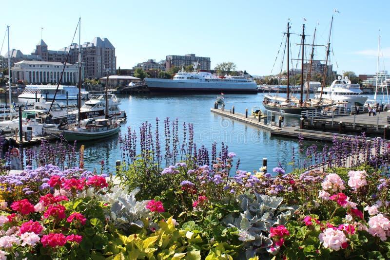 Victoria City Inner Harbor dans l'été images stock