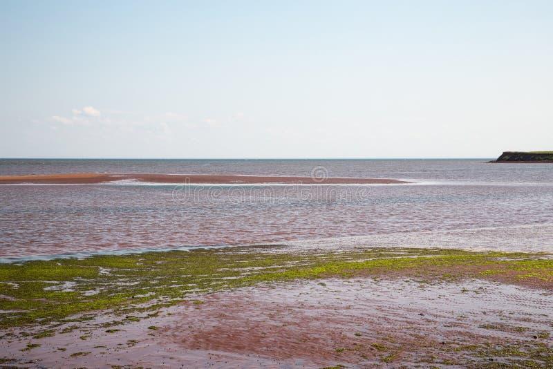 Victoria durch Meer auf Prinzen Edward Island in Kanada stockfotografie