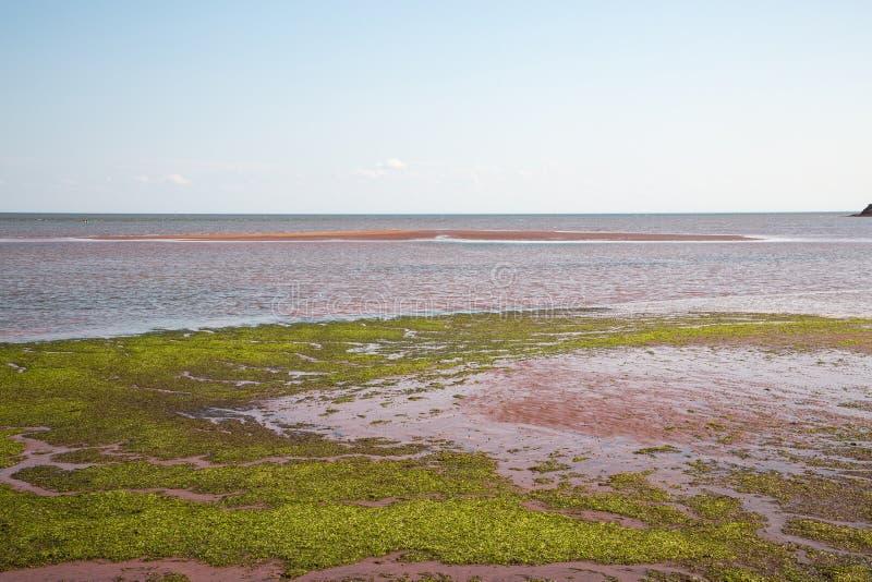 Victoria par la mer sur prince Edward Island dans le Canada photo libre de droits