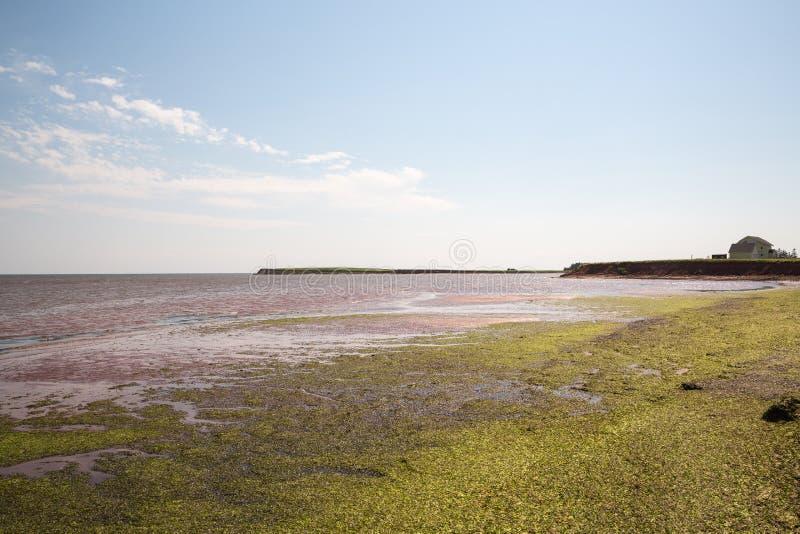 Victoria par la mer sur prince Edward Island dans le Canada image stock