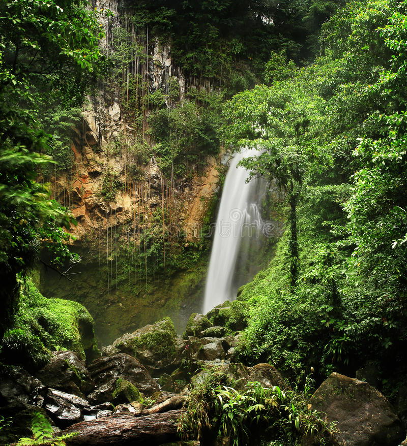 Free Victoria Waterfall (Dominica) Stock Photography - 50324222