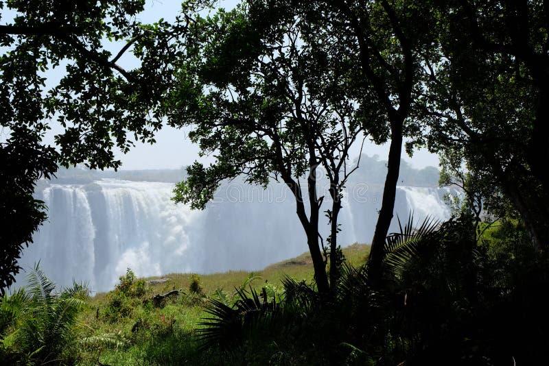 Victoria waterfalls royalty free stock photo
