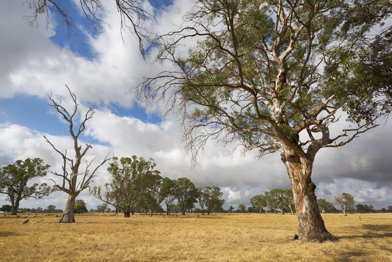 Victoriaans Landelijk Landschap royalty-vrije stock afbeelding