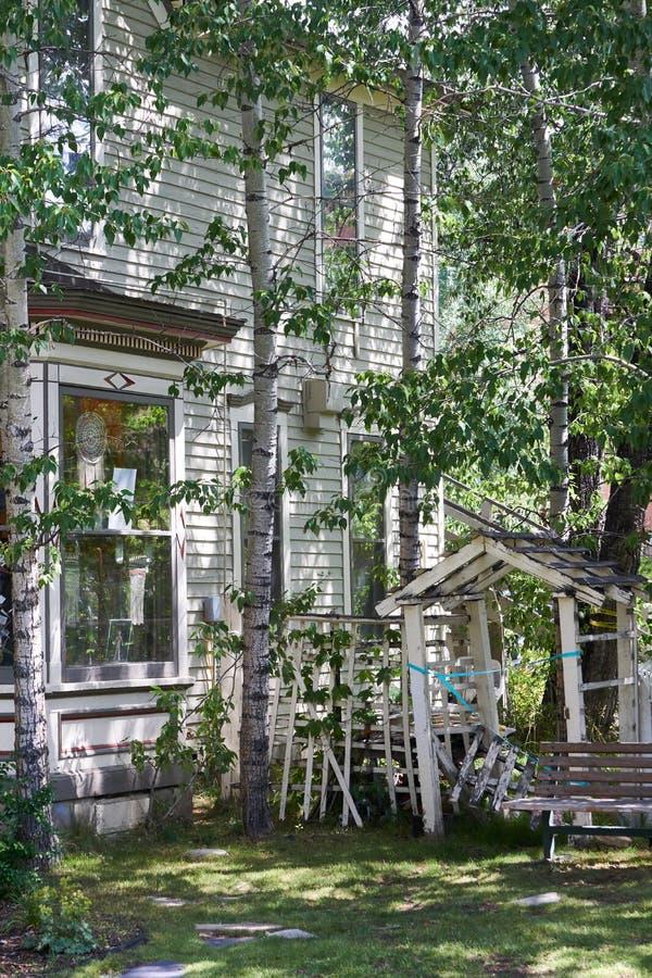 Victoriaanse die huizen door Aspen Trees worden omringd royalty-vrije stock foto