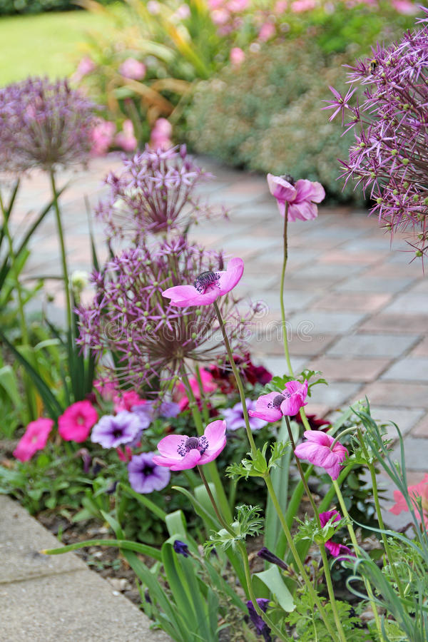 Victorian country cottage garden flowers royalty free stock image
