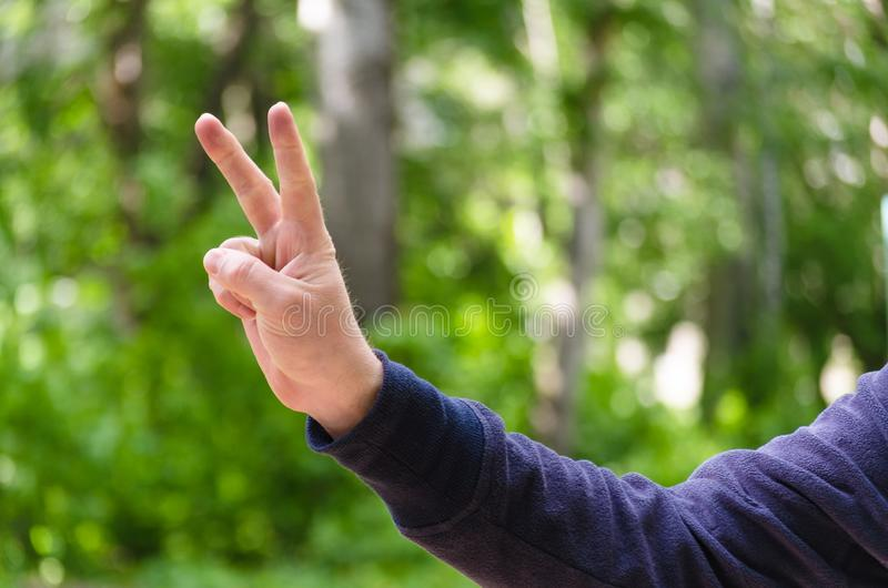 Victory hand sign. Gesture mens hand of two fingers. Concept of positive, peace, win. Closeup view on green nature background. stock photo
