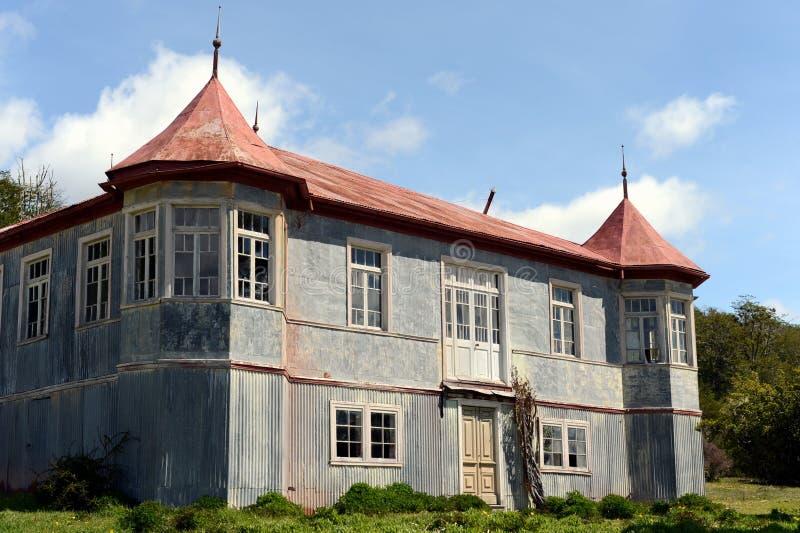 Vicuña del estado del vintage en Tierra del Fuego foto de archivo