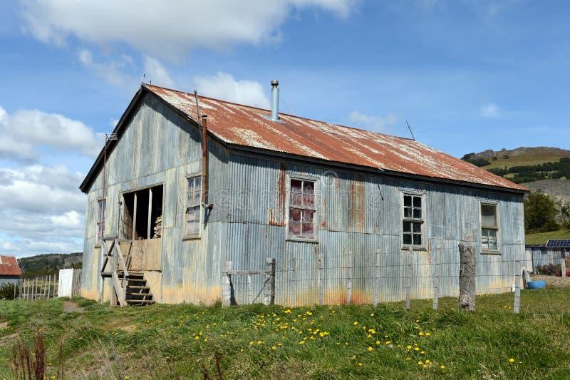 Vicuña del estado del vintage en Tierra del Fuego fotos de archivo