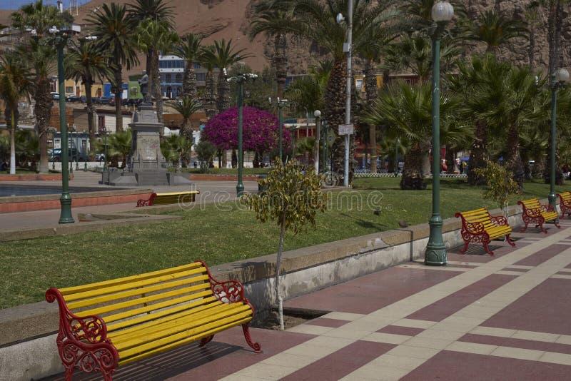 Vicunha McKenna da plaza em Arica, o Chile fotografia de stock