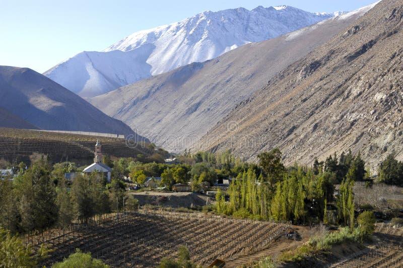 Vicunha, vale de Elqui, o Chile foto de stock royalty free