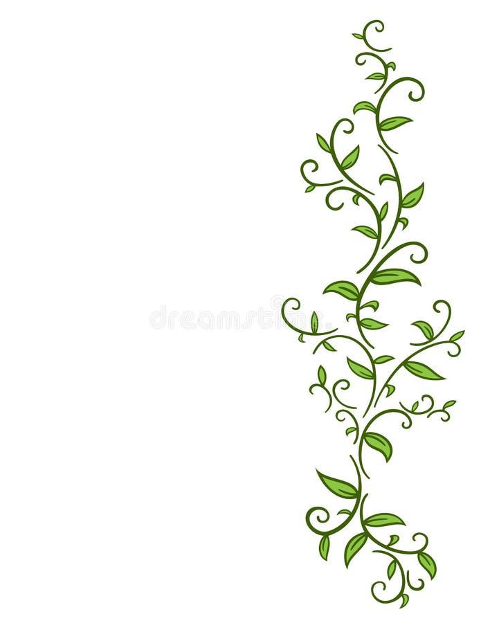 Vid tribal con las hojas ilustración del vector