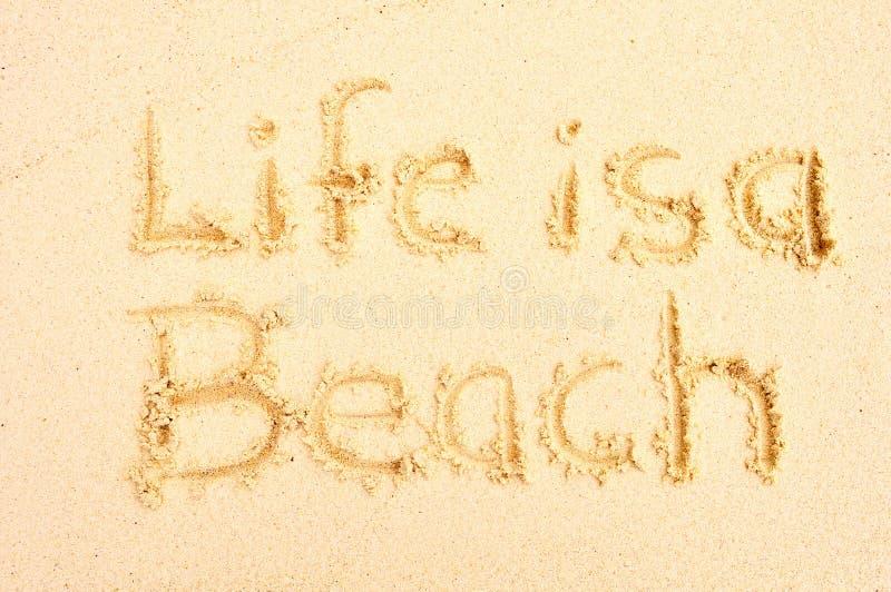 A vida é uma praia imagem de stock royalty free