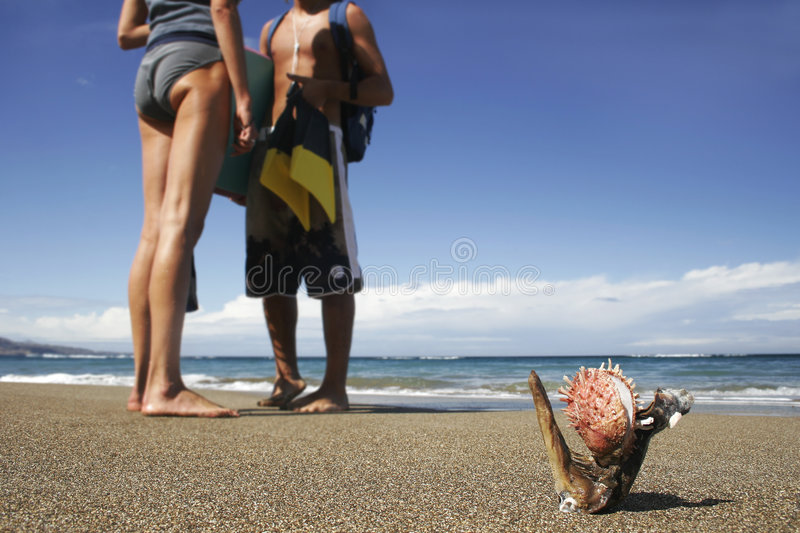 Vida 1 de la playa imagen de archivo libre de regalías