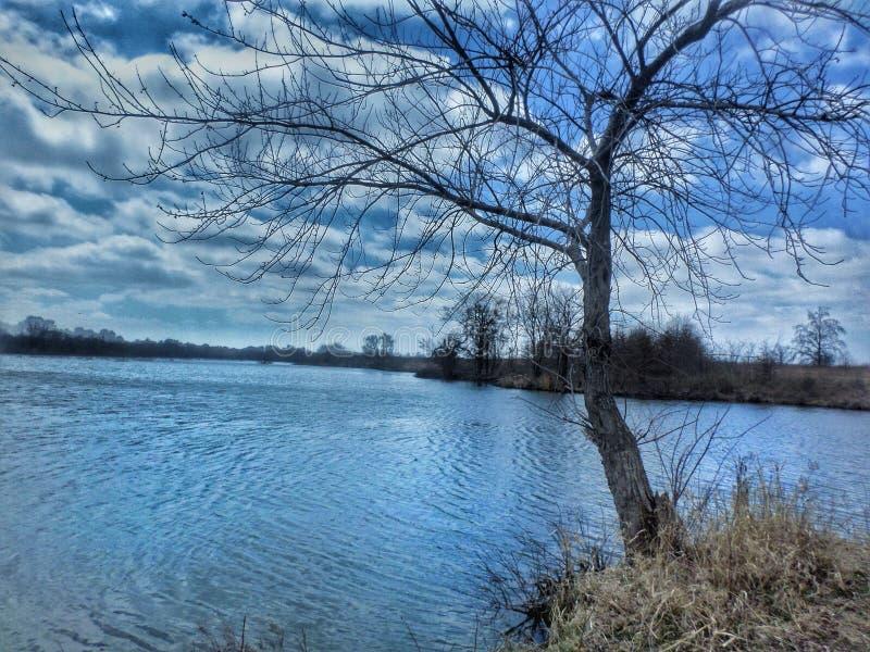 Vida al aire libre por el agua fotografía de archivo
