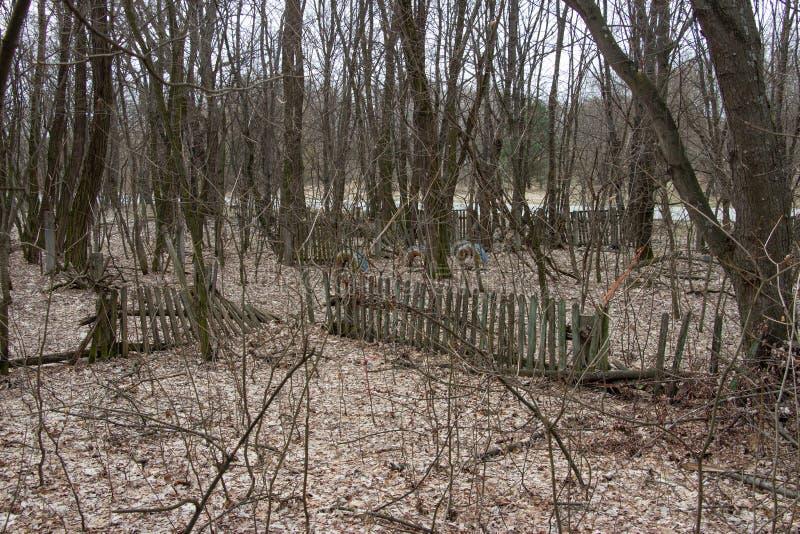 Vida após um desastre nuclear O chernobyl fotografia de stock royalty free