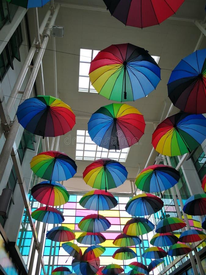 Vida colorida imagen de archivo libre de regalías