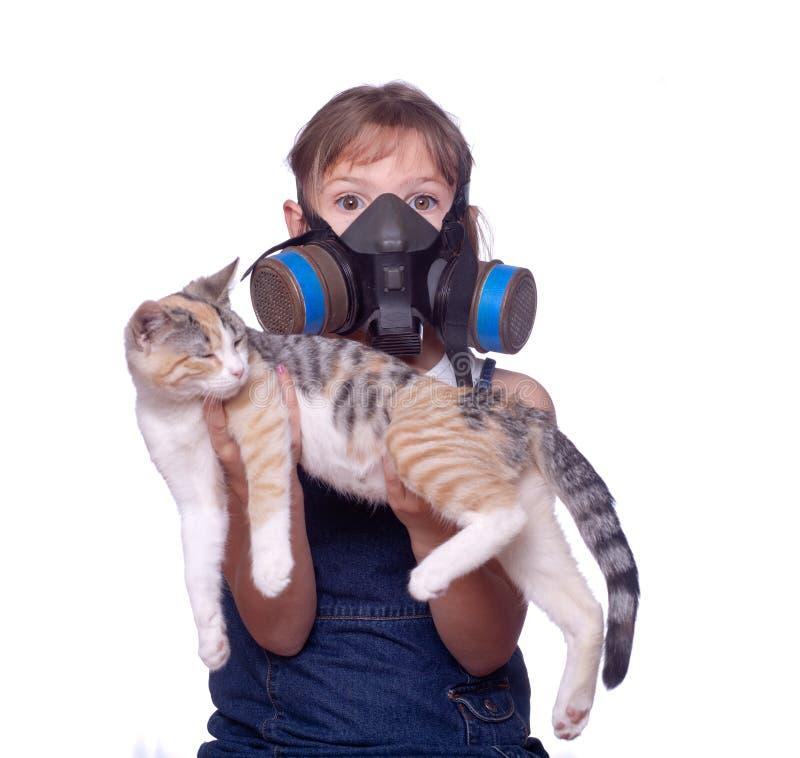 Vida con alergias del animal doméstico fotos de archivo