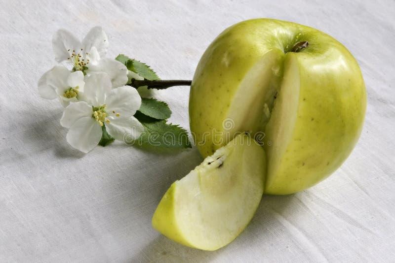 Vida da maçã verde fotografia de stock royalty free