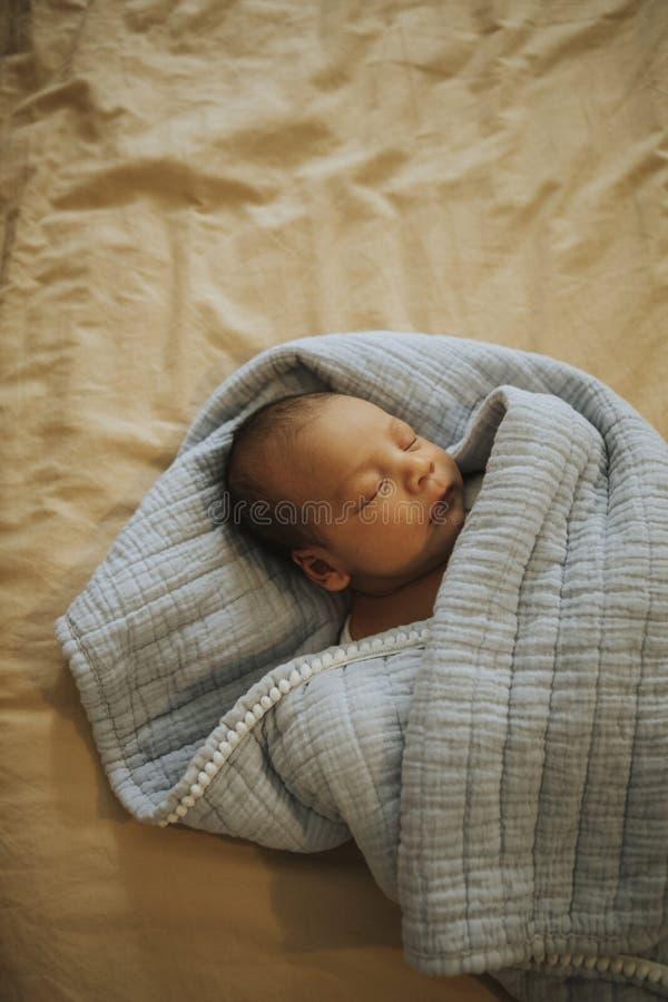 Vida da mulher gravida fotografia de stock royalty free