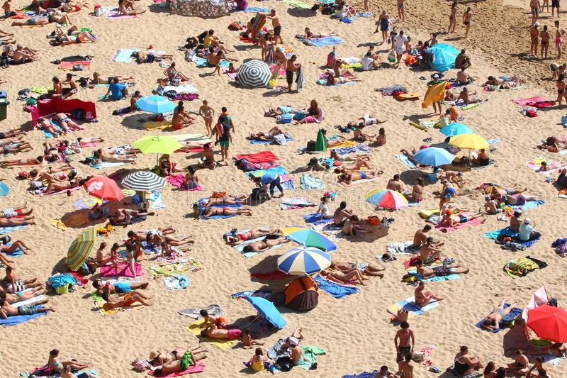 Vida da praia imagem de stock