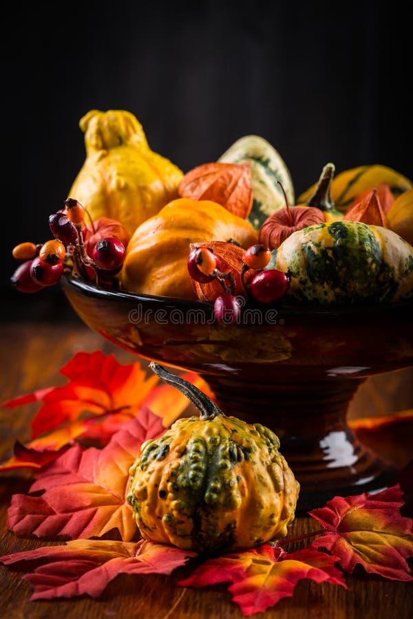 Vida de la acción de gracias y todavía de Halloween con las calabazas imagen de archivo