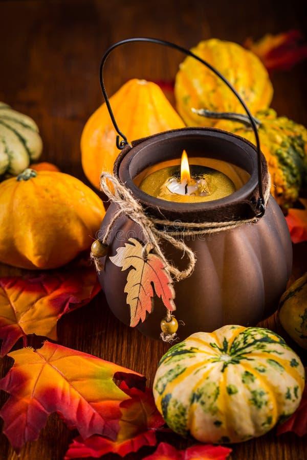 Vida de la acción de gracias y todavía de Halloween con las calabazas imagen de archivo libre de regalías