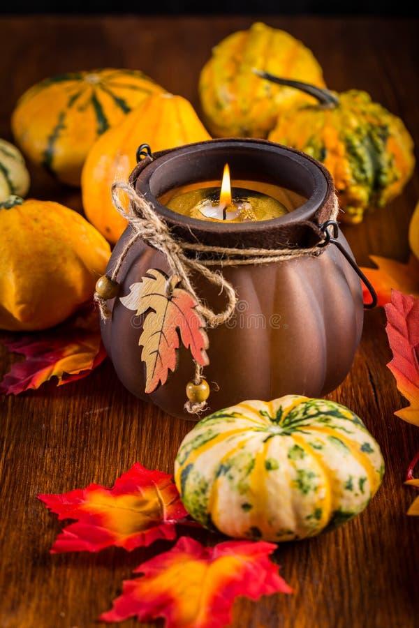Vida de la acción de gracias y todavía de Halloween con las calabazas foto de archivo