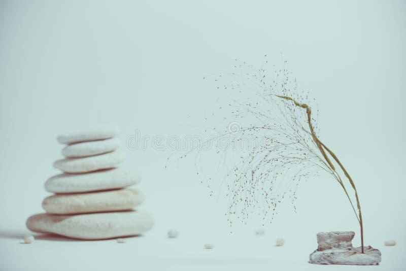 Vida de la calma del balneario con apilado de piedra con una rama hermosa imagen de archivo libre de regalías