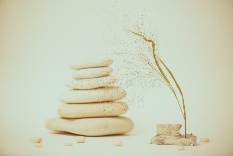 Vida de la calma del balneario con apilado de piedra con una rama hermosa imágenes de archivo libres de regalías