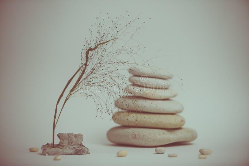 Vida de la calma del balneario con apilado de piedra con una rama hermosa fotografía de archivo