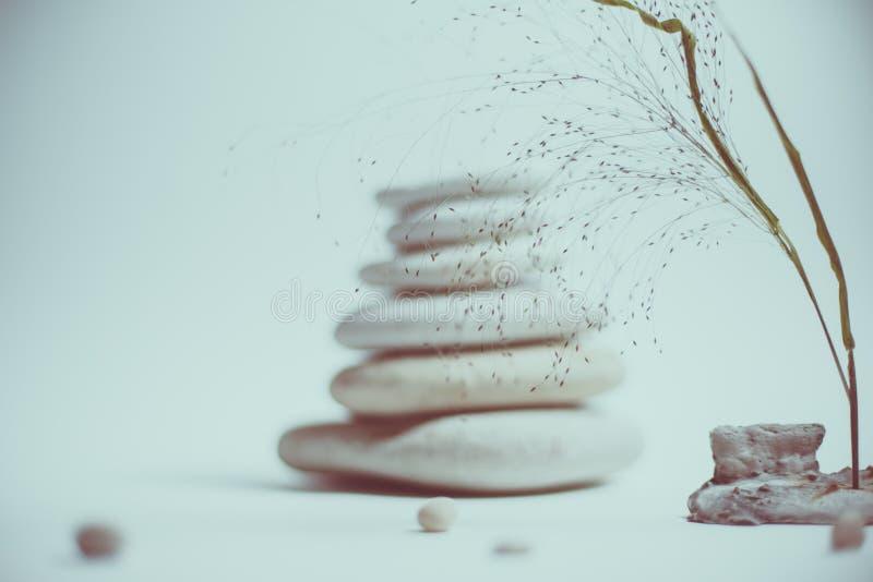 Vida de la calma del balneario con apilado de piedra con una rama hermosa fotos de archivo libres de regalías