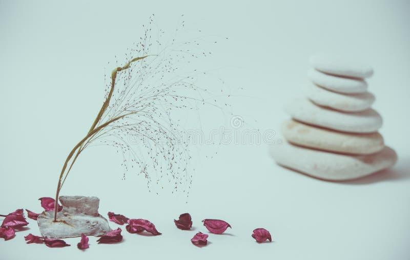 Vida de la calma del balneario con apilado de piedra con una rama hermosa imagenes de archivo