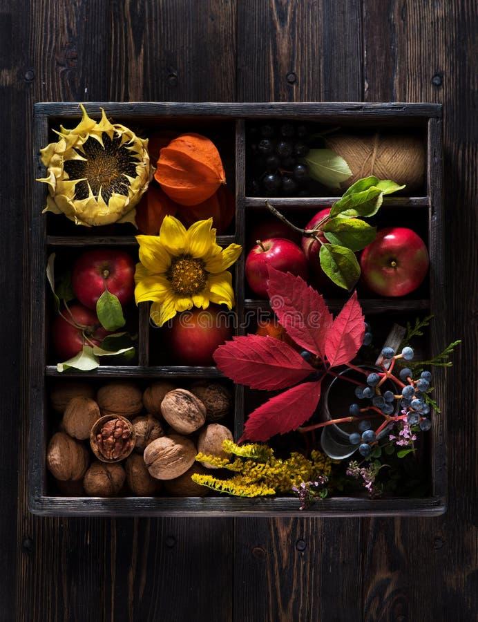 Vida de la calma del otoño con las flores rojas de las manzanas y de los girasoles en caja de madera imagen de archivo