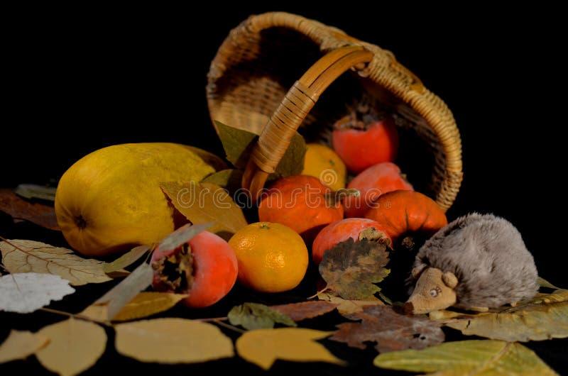 Vida de la calma del otoño en un fondo negro imágenes de archivo libres de regalías