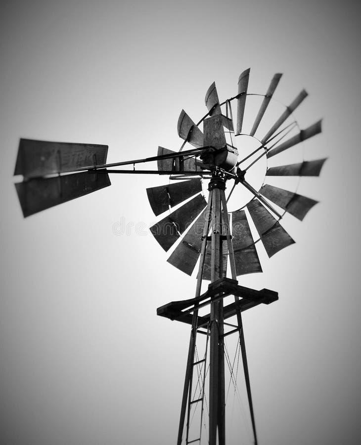 Vida de la granja fotografía de archivo