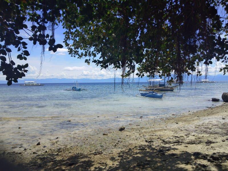 Vida de la isla imagenes de archivo