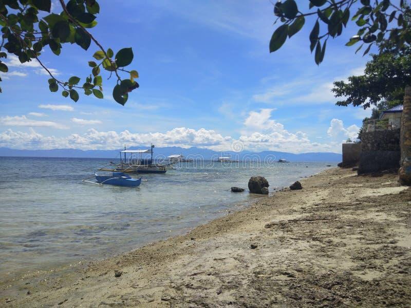 Vida de la isla fotografía de archivo libre de regalías