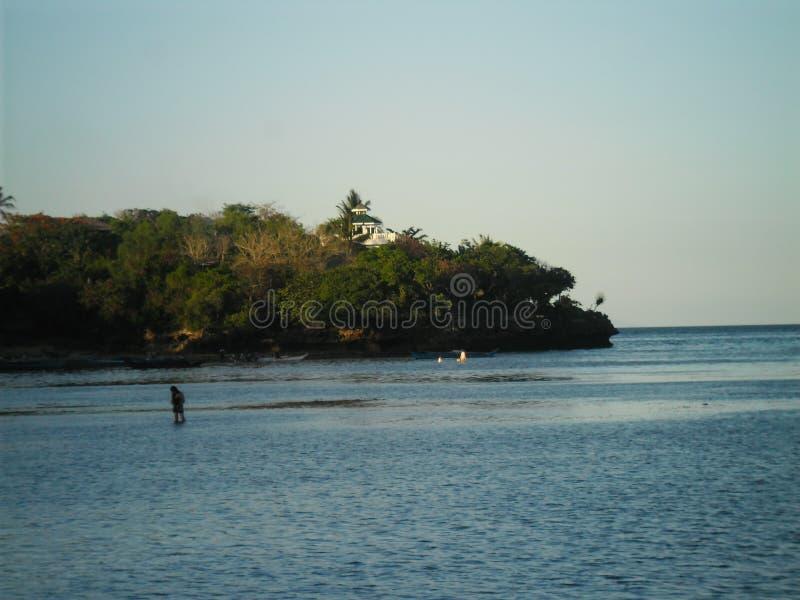 Vida de la isla fotografía de archivo