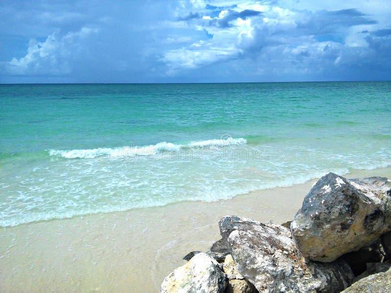 Vida de la isla de Bahama imagenes de archivo