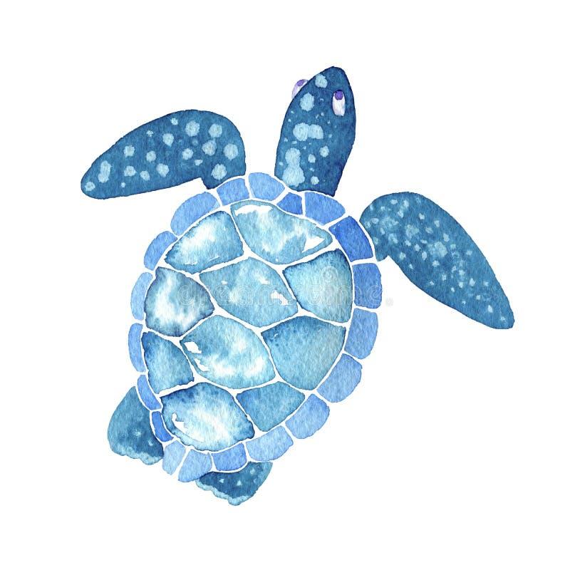 Vida de mar tartaruga de mar da aquarela ilustração royalty free