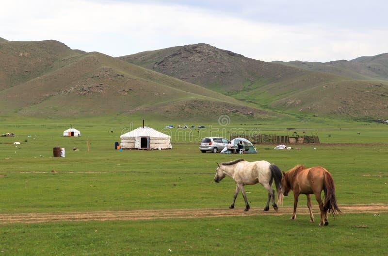 Vida del nómada del mongolian en sabana foto de archivo